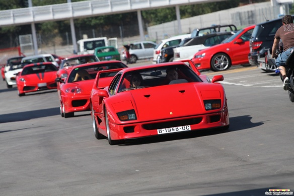 Ferrari F40 5